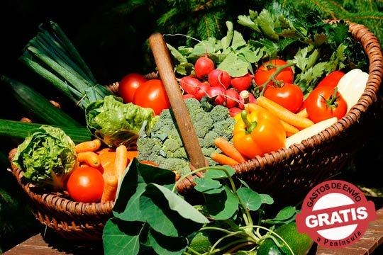 Consigue fruta y verdura al mejor precio y reduce el desperdicio alimentario gracias al destrío ¡Cajas de 5kg de frutas y verduras de la mejor calidad y sabor!