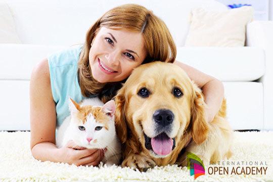 Conoce mejor a tu mascota con este curso de Psicología Animal ¡Mejora tu relación con ellos!