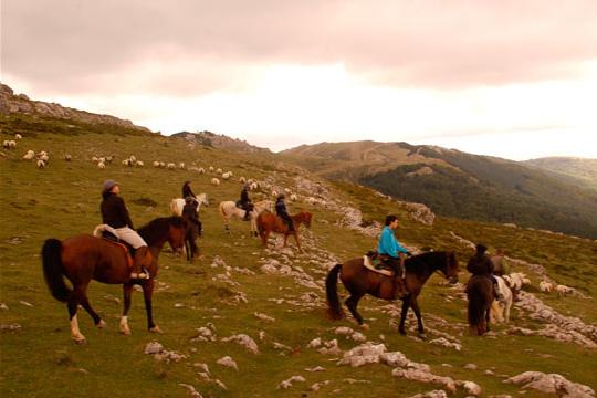 Campamento de equitación en Inglés de una semana durante los meses de verano en Sastarrain ¡Para niños de 8 a 16 años!