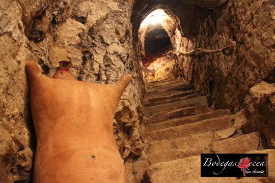 Descubre todos los secretos del buen vino con una visita guiada a Bodegas Lecea para 1 o 2 personas ¡Incluye cata de 3 vinos!
