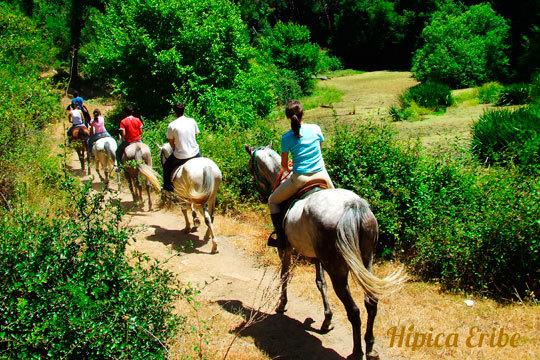 Disfruta de la naturaleza con un paseo a caballo o una excursión en Hípica Eribe ¡Coje las riendas de un caballo!