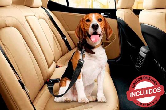 Cinturón de Seguridad para mascotas ¡Es tan sencillo como sujetar ambas partes, una al perro y otra al vehículo y a viajar sin preocupaciones!
