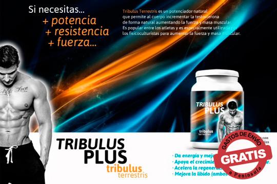Rinde más en tus sesiones de entrenamiento con Tribulus Plus ¡Recomendado para el pre-entrenamiento!