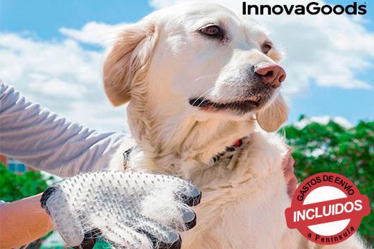 Cuida de tus mascotas con estos guantes para cepillar y dar masajes ¡Con tejido transpirable y cerdas de silicona!
