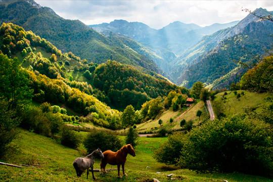 ¡La belleza de Asturias en tus fotografías de vacaciones! Estancia de 3 noches en apartamento con entrada el 5 de diciembre