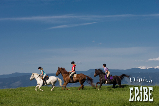 Descubre los beneficios de montar a caballo en Hípica Eribe ¡1, 5 o 10 clases de iniciación, salto, doma y más!