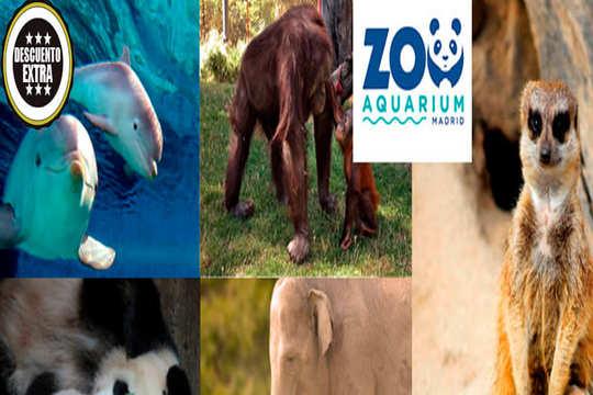 Entradas para niños y adultos al Zoo Aquarium de Madrid ¡Diviértete y conoce el reino animal!