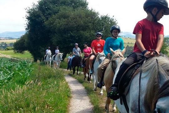 Paseo en pony o una ruta a caballo con clase teórica incluida en Paseos a caballo La Robleda ¡Aprovecha a tope tus fines de semana!