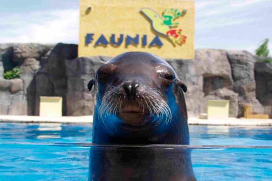 Disfruta de un día maravilloso en el Parque Faunia con entradas para adulto y niño ¡Más de 700 especies!