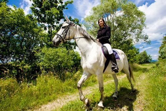 Disfruta de la naturaleza y la hípica con este paseo a caballo de 45 minutos con los profesionales de Caballerizas Arinez
