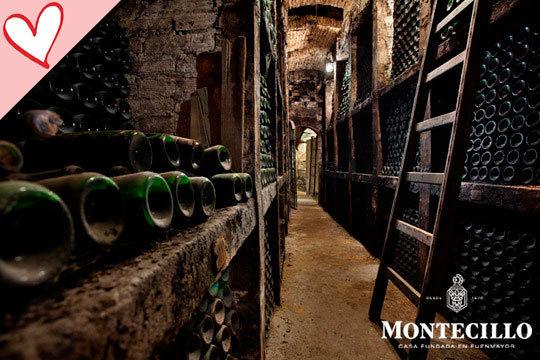 Visita completa a las instalaciones de la bodega + cata de vino + picoteo + botella de vino reserva en Bodegas Montecillo