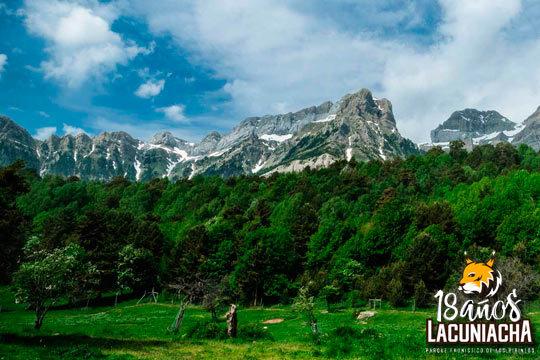 Pásatelo en grande en el Parque Faunístico Lacuniacha ¡Un bosque en pleno corazón del Pirineo Oscense!