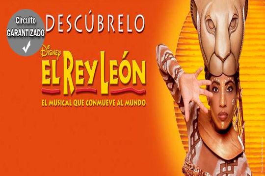 ¡Disfruta del musical 'El Rey León'! Incluye entrada al espectáculo, viaje en autobús desde Bilbao y noche en hotel con desayuno